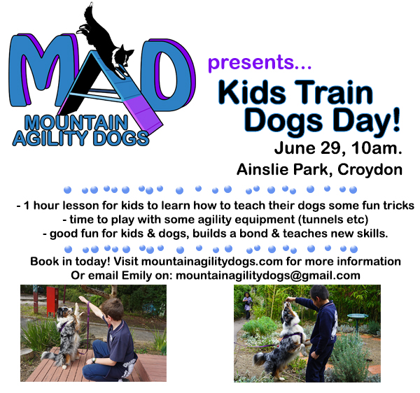kids train dogs